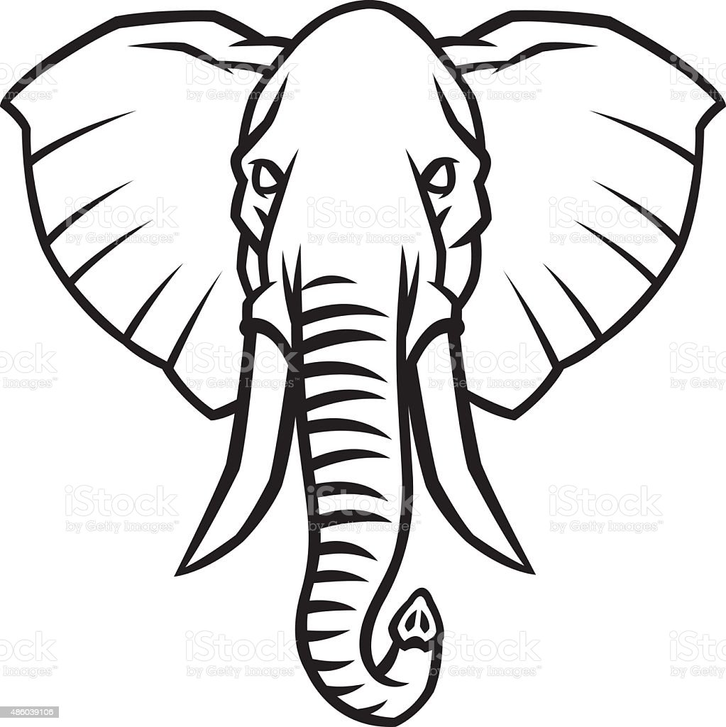 Line Drawing Elephant Head : Head of an elephant with large tusks stock vector art