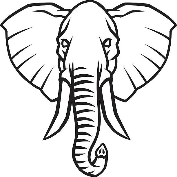 Black Elephant Meaning The Best Elephant Of 2018