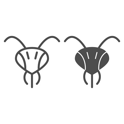Head of bee line and solid icon, Honey concept, insect head sign on white background, wasp icon in outline style for mobile concept and web design. Vector graphics.