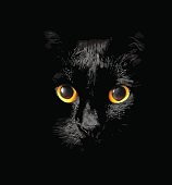 head of black cat with glowing Golden eyes