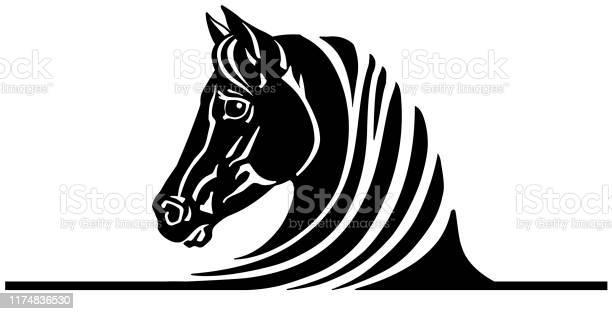 Head of black horse vector id1174836530?b=1&k=6&m=1174836530&s=612x612&h=nr5jfezyfitfpp6sjra4b94hkjoulayevonzgfguyuu=