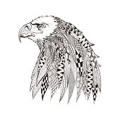 Head of eagle. Hand Drawn doodle vector illus