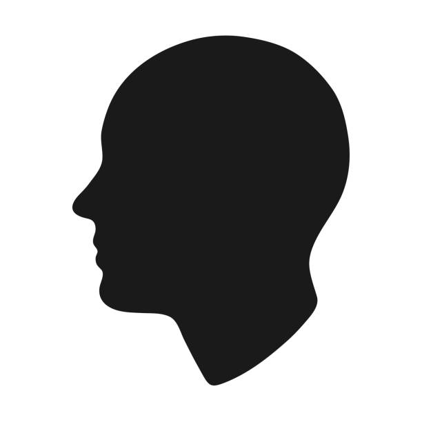 head silhouette. head silhouette. Vector illustration. human head stock illustrations