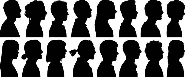 Head Silhouettes Highly detailed head silhouettes. in silhouette stock illustrations