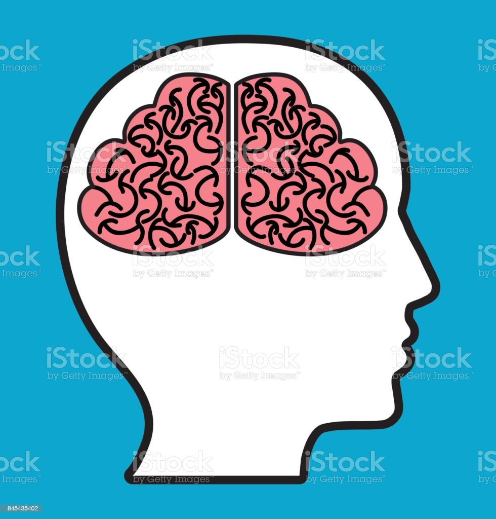 Head With Brain Icon Stock Vector Art & More Images of Anatomy ...