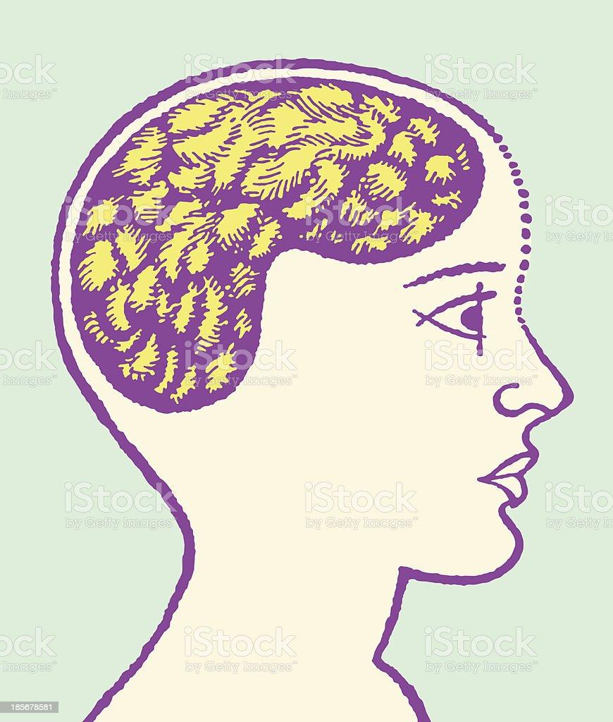Ilustración de Cabezal Con Cerebro Medio y más banco de imágenes de ...