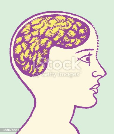 Head With Brain Illustration