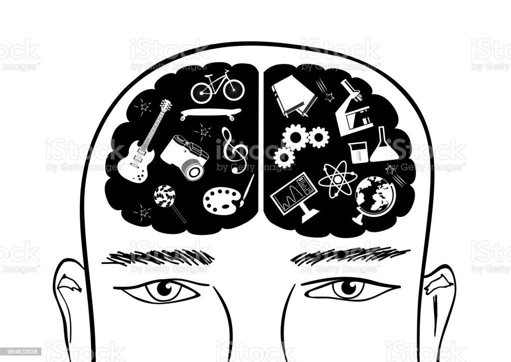 ベクターでの脳の右と左の大脳半...