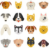 Heads of home pets. Funny dogs in flat style. Vector animal cat, illustration of character puppy