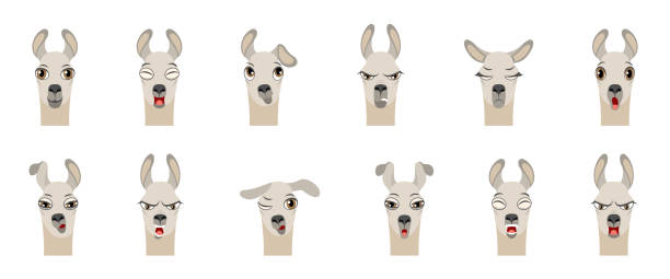 heads of lama with different emotions - smiling, sad, anger, aggression, drowsiness, fatigue, malice, surprise, fear - jealous emoji stock illustrations, clip art, cartoons, & icons