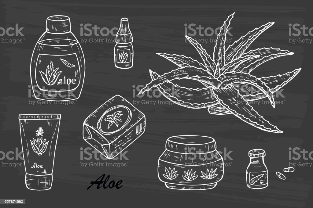 Health and beauty Vector set: Cosmetic bottles and packaging. Hand drawn Aloe cosmetics and Aloe Vera plant. Alternative medicine, treatment and body care with aloe ingredients. Vector illustration vector art illustration
