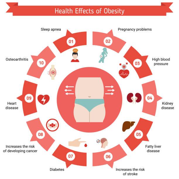 gesundheit und gesundheitswesen infografik - stoffwechsel stock-grafiken, -clipart, -cartoons und -symbole