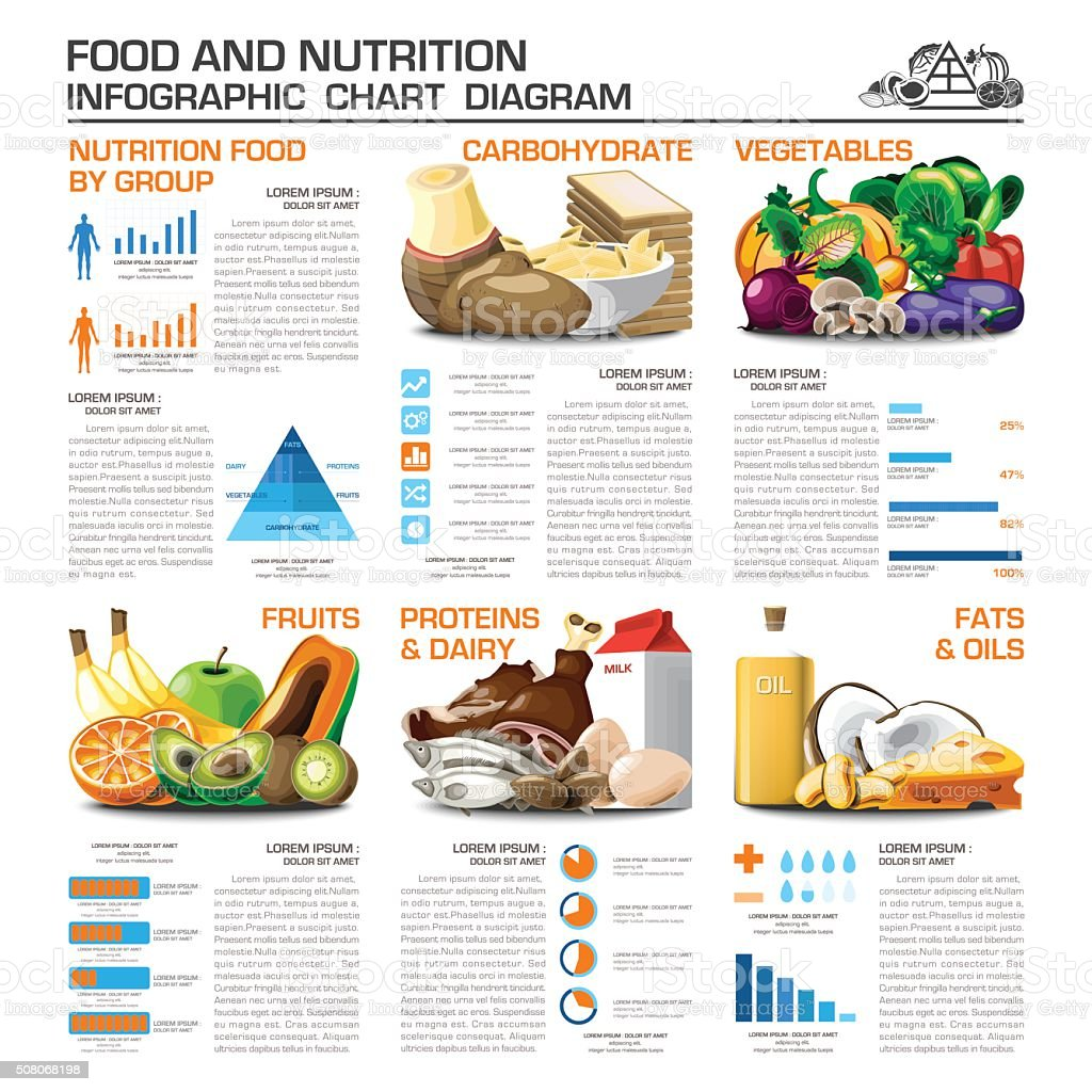 Health And Nutrition Food By Group Infographic Chart Diagram vector art illustration