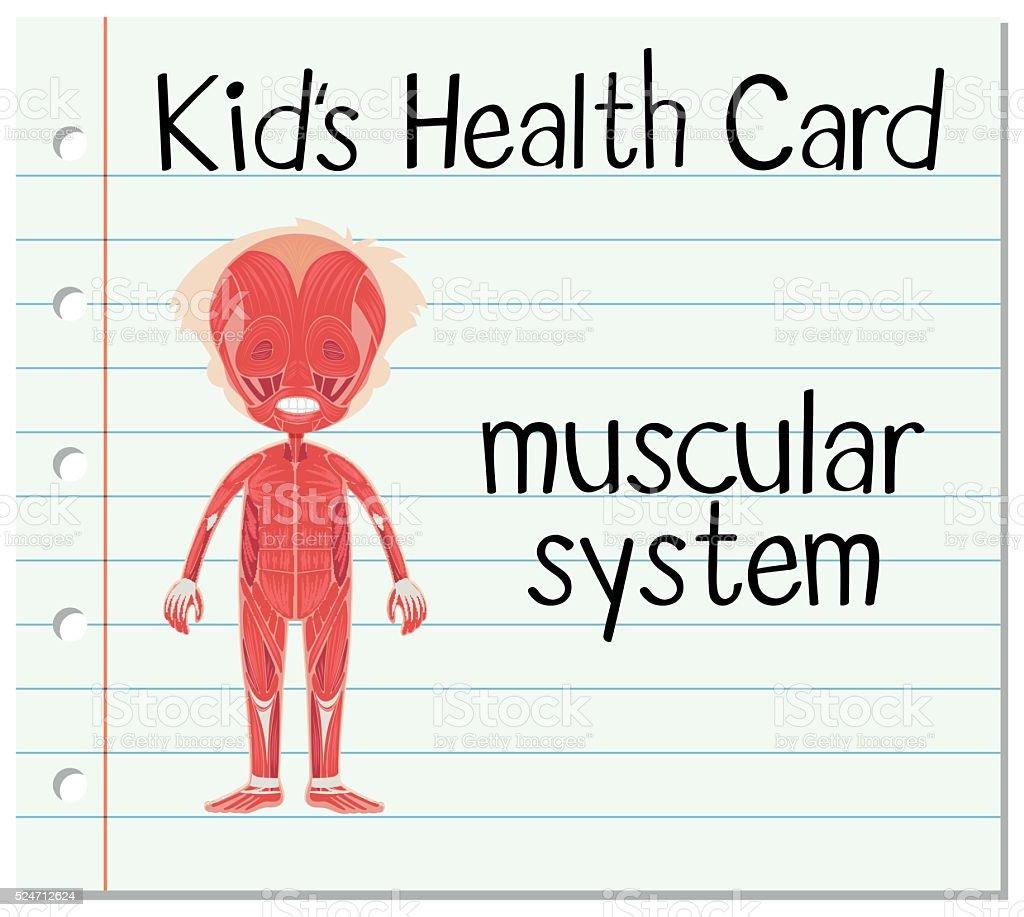 Tarjeta De Salud Con Sistema Muscular - Arte vectorial de stock y ...