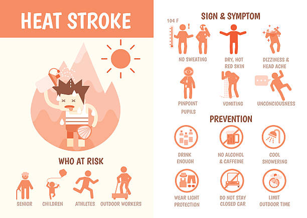 health care infographics about heat stroke health care infographics about heat stroke risk sign and symptom and prevention exhaustion stock illustrations
