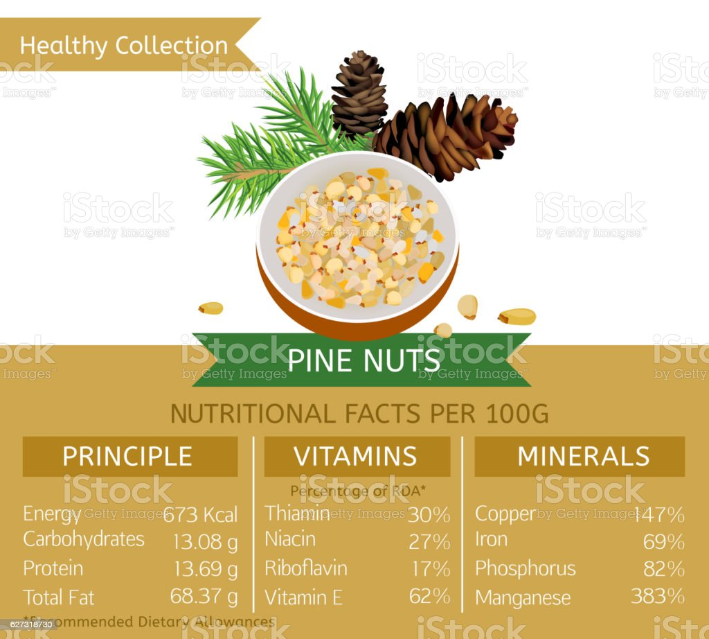 Healthy Collection Image vector art illustration