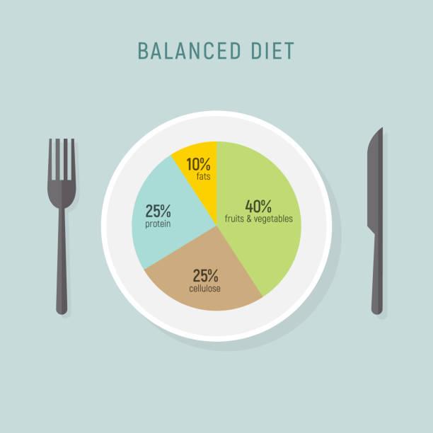 stockillustraties, clipart, cartoons en iconen met gezonde voeding voedsel, balans voeding plaat. vector gezondheid maaltijd grafiek infographic, dieet plan concept - portie