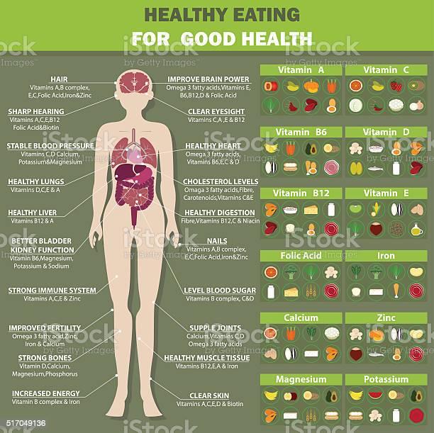 Healthy eating for good health vector id517049136?b=1&k=6&m=517049136&s=612x612&h=o3i9fgoif9bukdhtmd7kso axa92pi5mtsadvp4jl8y=
