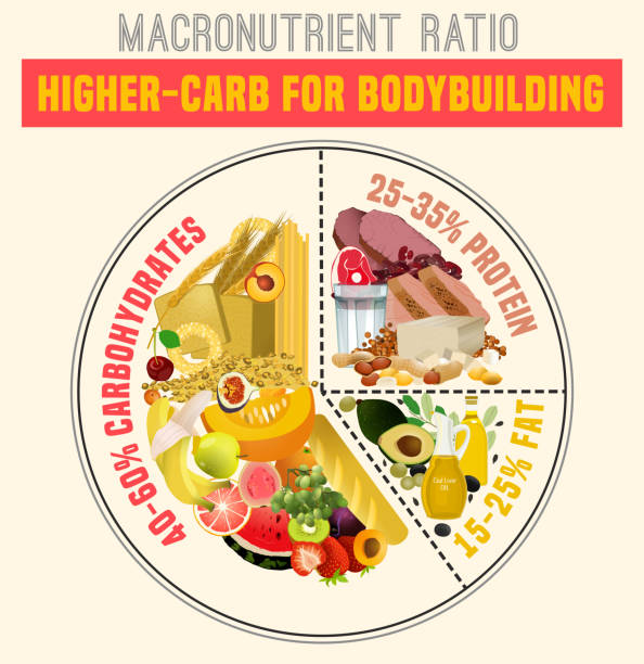 Healthy Eating Plate Higher carbohydrate diet diagram. Macronutrient ratio poster. Bodybuilding concept. Colourful vector illustration isolated on a light beige background. Healthy eating concept. glycemic index stock illustrations