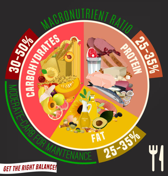 Healthy Eating Plate Moderate carbohydrate diet diagram. Macronutrient ratio poster. Fat loss concept. Colourful vector illustration isolated on a dark grey background. Healthy eating concept. glycemic index stock illustrations
