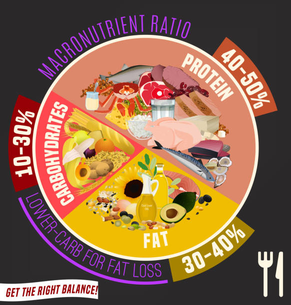 Healthy Eating Plate Low carbohydrate diet diagram. Macronutrient ratio poster. Fat loss concept. Colourful vector illustration isolated on a dark grey background. Healthy eating concept. glycemic index stock illustrations