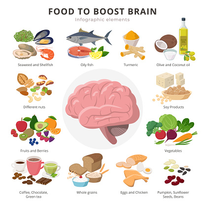 Healthy food for brains infographic elements in detailed flat design isolated on white background. Big collection of foods icons around the Brain illustration, medical infographic theme