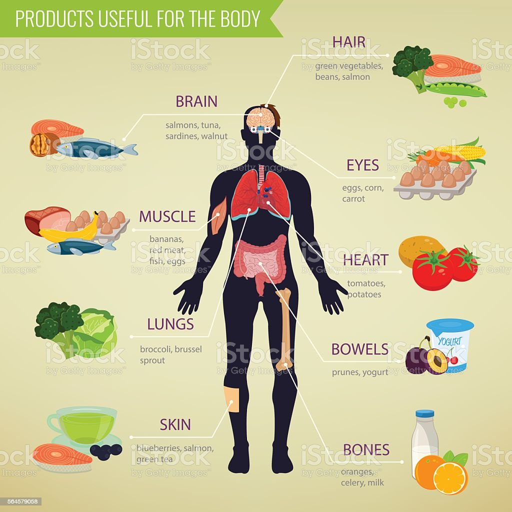 healthy food for human body healthy eating infographic