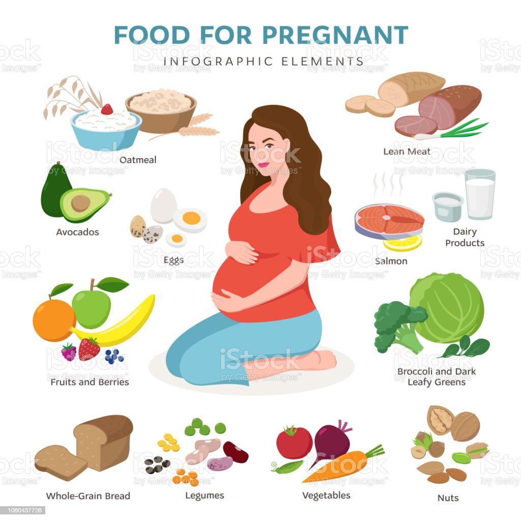 0d02ee87a Alimentação saudável para os ícones de plana de vetor grávida isolado no  fundo branco. Bonita