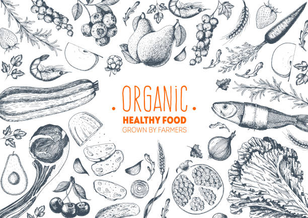 illustrazioni stock, clip art, cartoni animati e icone di tendenza di healthy food frame vector illustration. vegetables, fruits, meat hand drawn. organic food set. good nutrition. - kitchen situations
