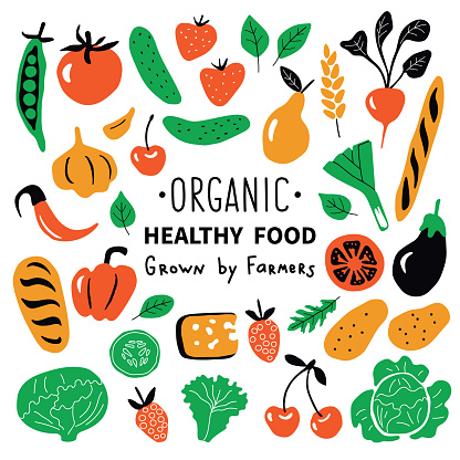 Healthy food, organic products set. Funny doodle hand drawn vector illustration. Farm market cute food collection. Natural fruits and vegetables. Isolated on white.