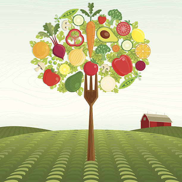 Healthy Harvest A Fork Tree made of Vegetables and Fruit stands on a Framers Field. avocado patterns stock illustrations