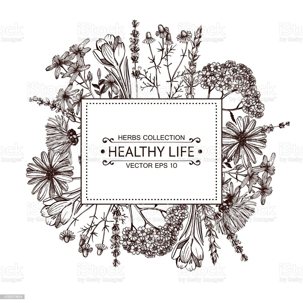 Healthy life illustration with assorted vegetables vector art illustration