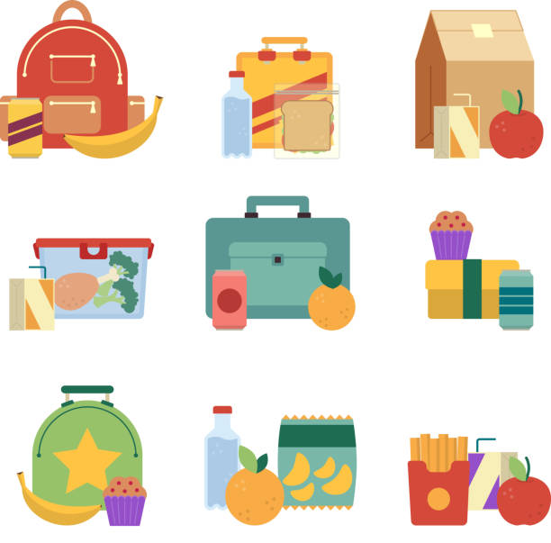 Healthy lunch in plastic box. Lunchbox for kids. Vector illustration set isolate on white background vector art illustration