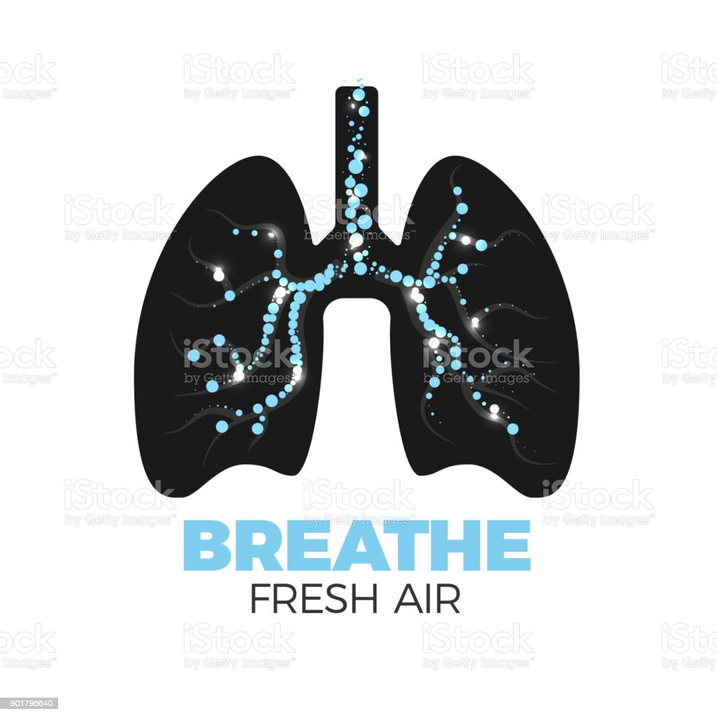 Healthy lungs icon vector art illustration