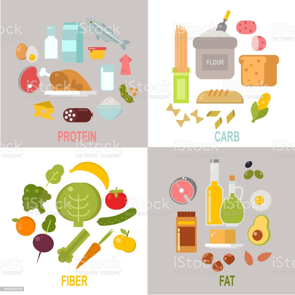 Healthy nutrition, proteins fats carbohydrates balanced diet vector vector art illustration