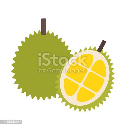 Healthy organic durian, colorful tropical nature fresh fruit objects.