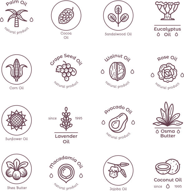 Healthy organic flower cosmetics oil linear vector labels and logos Healthy organic flower cosmetics oil linear vector labels and logos. Linear badge oil coconut and avocado, lavender and sandalwood illustration thyme stock illustrations