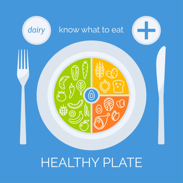 ilustrações, clipart, desenhos animados e ícones de conceito de prato saudável - healthy food