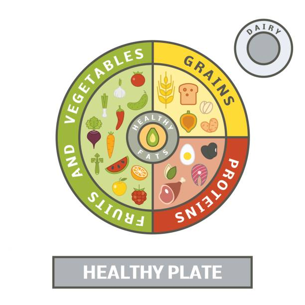 healthy plate concept - healthy eating stock illustrations, clip art, cartoons, & icons