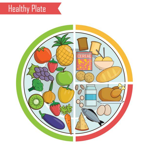 healthy plate nutrition balance illustration - healthy eating stock illustrations, clip art, cartoons, & icons