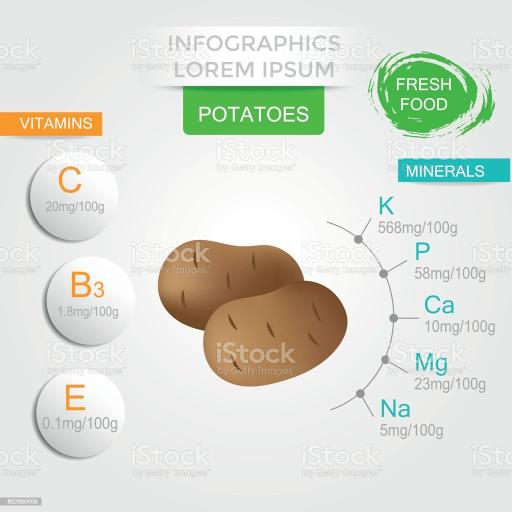 Healthy Potato Infographics With Marrow Vitamins And