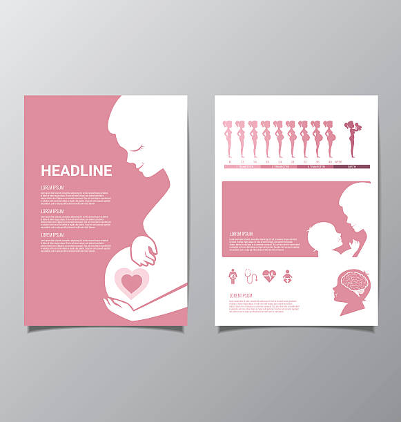 Healthy Pregnant women infographic vector art illustration