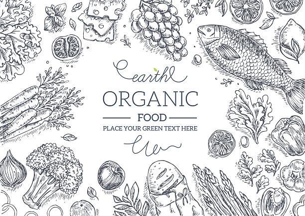 ilustrações, clipart, desenhos animados e ícones de saudáveis legumes quadro. gráfico linear. vetor ilustração - ingredientes