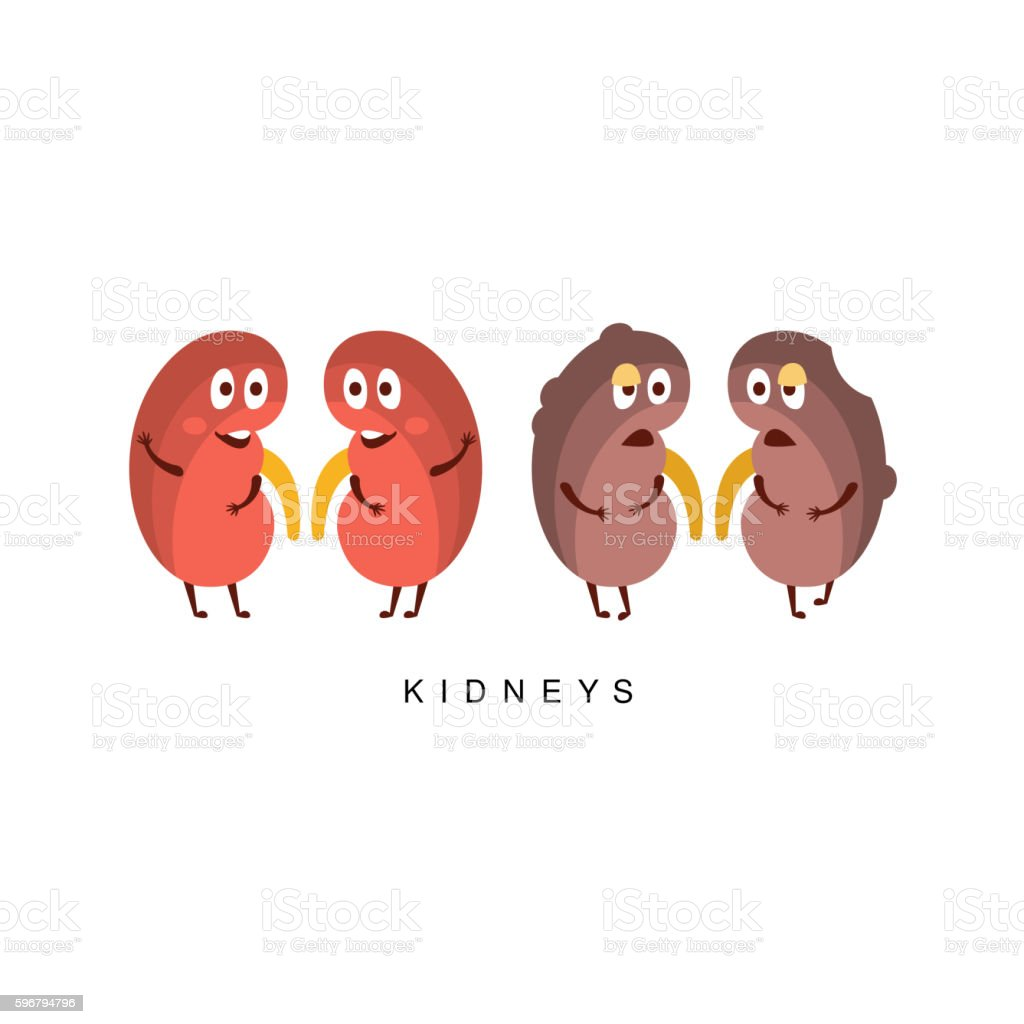 Healthy Vs Unhealthy Kidneys Infographic Illustration ...