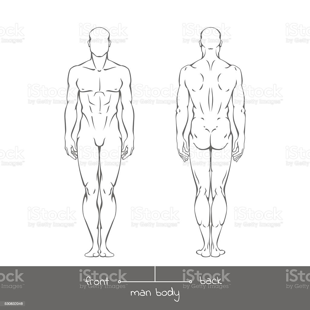 Healthy Young Man From Front And Back View Stock Vector Art More