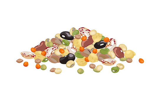 Heap of different beans and legumes isolated on white background. Pile of bean, green pea, chickpea, mung bean, soybean and lentil. Vector illustration of organic healthy food in cartoon flat style.