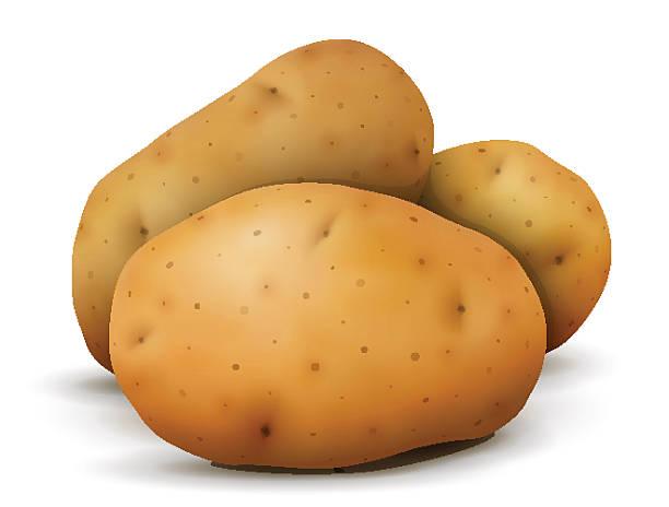 haufen von kartoffeln tubers nahaufnahme - kartoffeln stock-grafiken, -clipart, -cartoons und -symbole