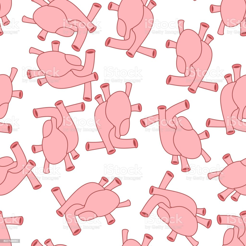 Heart anatomy body seamless pattern. Atrial and ventricular pattern....