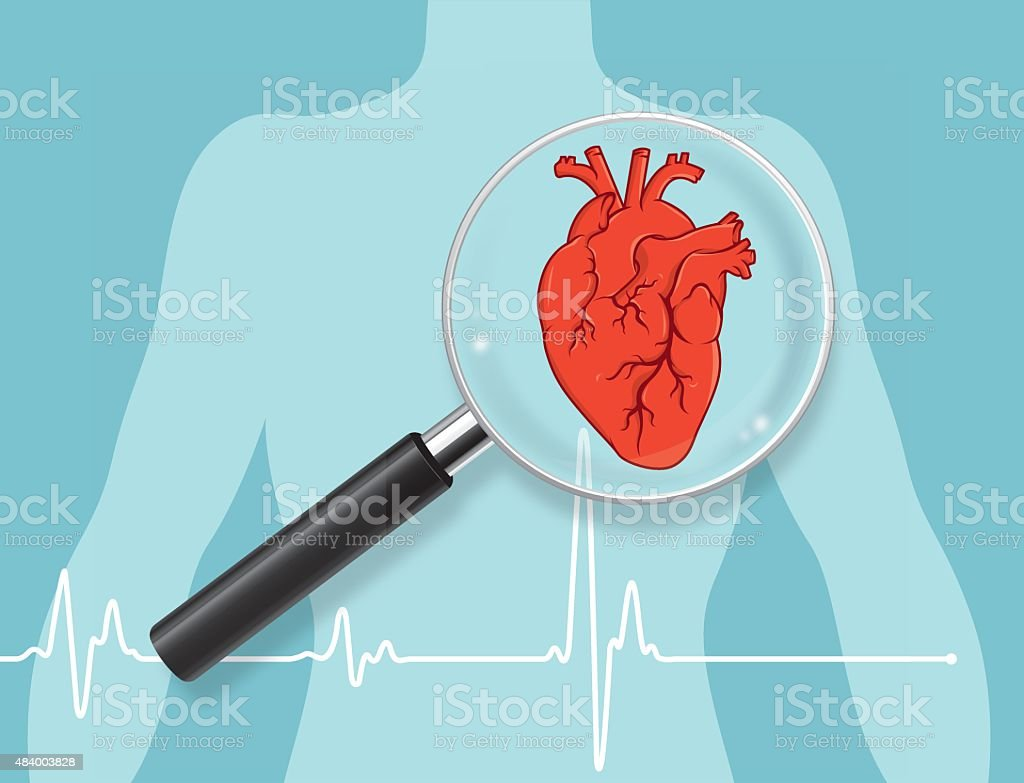 Heart checkup vector art illustration