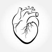 Heart drawings vector.